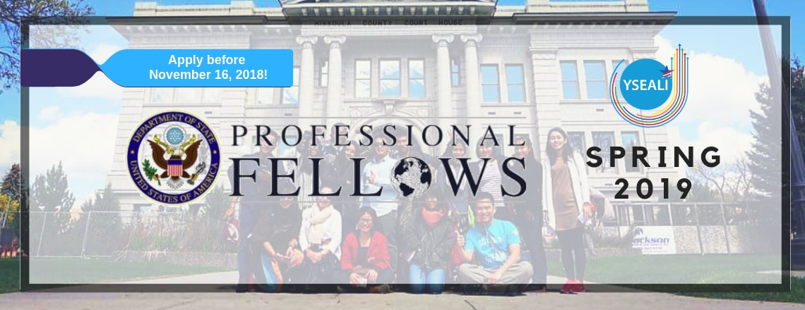 YSEALI Professional Fellows Application Now Open!